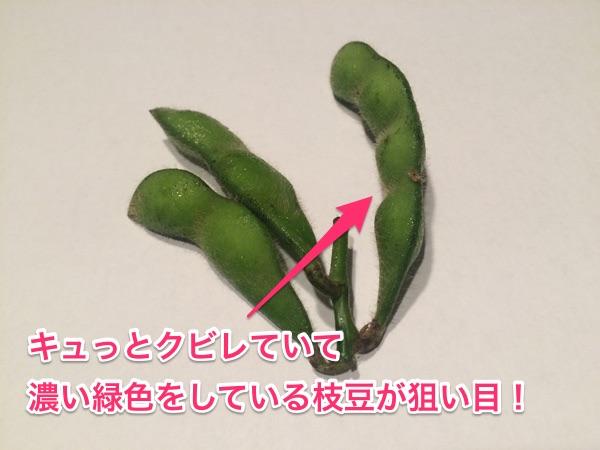 くびれ枝豆